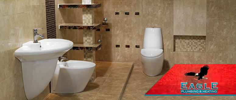 Clogged Toilet Repair Services in Bellingham WA